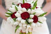 Γνωρίζοντας τη τουλίπα σαν λουλούδι / Η τουλίπα είναι αγαπημένο φυτό, με πολλούς θαυμαστές και λάτρεις σε όλο τον κόσμο. Απλή, λιτή και όμορφη, διακοσμεί το χώρο μας και ομορφαίνει τη διάθεσή μας....