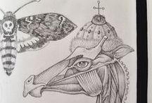 Graphic art / graphics, sketches, moleskine