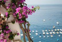 Italy road trip / Florence-Perugia-Rome-Napoli-Positano-Carpi-Amalfi Coast