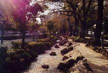 Tokyo / by Tony