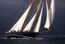 Sails & Co. / Vele & Co.