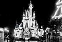 Dream Destinations! ✈️