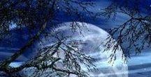 Za svitu měsíce , polární záře