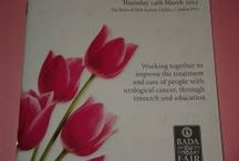 The journey begins for the UCARE tulip / UCARE was offered the most unusual lot for auction at a fundraising evening at the British Antique Dealers' Association dinner in March this 2013. The opportunity to name the new, tall -stemmed, pink tulip and to introduce the symbol which will appear on all our future promotional and marketing materials and forms the basis of our logo. On this optimistic note, we ended a perfect evening, with everyone committed to building awareness of the UCARE pink tulip