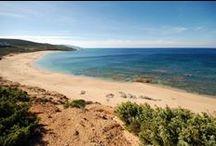 Spiagge della Costa Verde / Il Tarthesh si trova in una posizione strategica per poter visitare ogni giorno una spiaggia diversa. Il tour delle spiagge della Costa Verde è consigliato per chi ama il mare, la tranquillità, e tutte le sfumature del verde e dell'azzurro. Nei 48km di costa del comune di Arbus le più note, partendo da sud, sono: Capo Pecora, Scivu, Piscinas, Portu Maga, Campu 'e Sali, Gutturu 'e Flumini, Funtanazza, Porto Palma, Torre dei Corsari, Pistis. Foto by #EttoreCavalli guida ufficiale del Tartheshotel