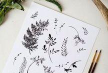Dessin esquisses / drawing