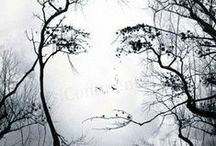 Symbolic: Nature