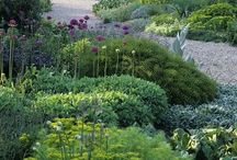 Cottage plantings
