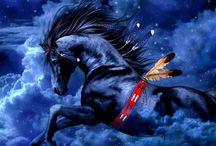 War Ponies / by Gloria Bush