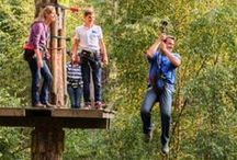 Lake District Activities / Activities that you can enjoy during your visit to the Lake District.