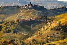 Tuscany / by Fiorire Kojimachi