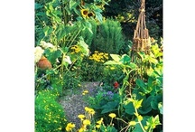 Rooftopvegplot / Inspiration for my roof top veg plot.  Ideas that I could use.  Always vegetable gardening generally potager style.