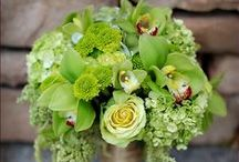 A bunch of flowers / Just a simple flower board for pure flower lovers