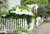 Fences / Fences are not only practical but can create the perfect coastal cottage or farmhouse feel to any home.