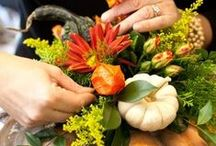 A Thanksgiving Feast / Whether you feast with a large gathering of family and friends or share a more intimate dinner for two: Think Culinary Cornucopia filled with the colors of Fall