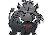 Hog Wild / Hog Hunting