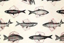 Fish - Ryby