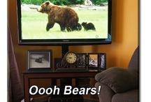 BEARS! / I love me some bears!