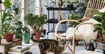 //jardin d'hiver// / Inspiration pour un jardin d'hiver, veranda. Osier, rotin, bois naturel, plantes vertes, suspensions en rotin ...