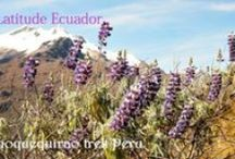 Latitude Ecuador / These are pictures from my blog posts