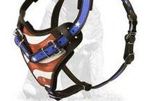 #Mastiff#breed#Harnesses / Cool  #nylon and #leather #harnesses  for Mastiffs)