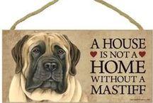 We #love #Mastiffs! / How people show their attitude)