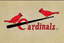 Cardinals - baseball / My St. Louis Cardinals and other baseball items / by Photos+
