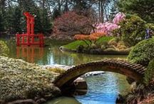 Favorite Japanese Gardens / Enjoying the asian horticultural aesthetic.