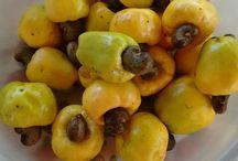 Horta e frutos