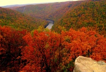 West Virginia & People From WV / by Brian Martin