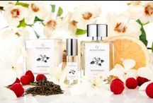 Savannah Magnolia Fragrance / Fresh grapefruit and raspberries make way for stately, century-old Southern Magnolia trees bursting with evanescent blooms that are sweet and creamy. The summer's encroaching humidity warms the air and wafts the joyful scent in your direction, as you stroll down the cobblestone street in this charming and historic city. Fresh and simple, this citrus and magnolia composite brings to life the essence of southern charm found on a springtime getaway to Savannah, Georgia.
