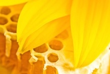 Yellow Mood Board / The Psychics LIVE TV app features a free Colourscope to help you decode your current mood. Download the app today for free colourscope readings www.psychicslivetv.com