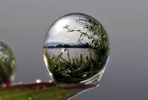 Nature / Beautiful landscapes and reflections on the natural world