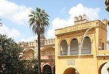 architecture andalouse / Style mauresque qu'on retrouve dans la grande mosquée de Cordoue, l'Alhambra à Grenade, l'Alcazaba à Malaga, La Giralda et l'Alcazar à Séville / by Georgia K