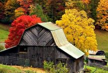 Barns / by Lisa Smith