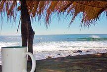 Coffee Source Countries /