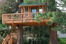 Tree Houses / by Lisa Smith
