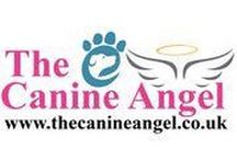 www.thecanineangel.co.uk / www.thecanineangel.co.uk.  For further information, please email:  kelly@thecanineangel.co.uk.