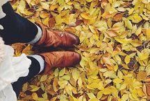 all things autumn. / by Alyssa Krahn