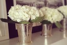 Florals  / by Jolie Barrios