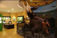 Museums in Colchagua / Museums of Colchagua Valley - Chile..