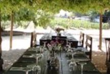 Viu Manent Winery / Viu #Manent is a beautiful and traditional winery in Santa Cruz - Colchagua Chile. They offer daily wine tours all year round - - #Colchagua wine #tours - #Pinterest- Colchagua-Wineries