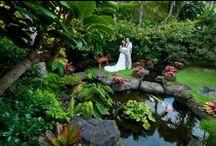 Tropical Garden Weddings
