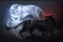 Könyv - Tiger's Curse - Dhiren <3
