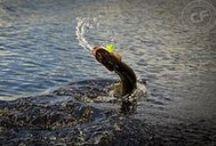 Na ryby/Let's go fishing / Wspomnienia z wędkarskich wypraw, czyli woda, natura i przygoda.