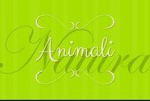 Animali/Animals / In questa bacheca si caricano immagini di animali qualsiasi che trovate carine, divertenti, ecc....Apprezzo consigli su chi altro invitare. Divertitevi! In this board you can add animals images that look funny or sweet to you. Enjoy!