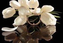 LE TABOU / LE TABOU, du nom du club de jazz adulé dans le Saint-Germain des années 50 s'inspire des bijoux typiquement Modernistes, lisses et comme taillés dans la matière, jouant sur la superposition et l'imbrication de joncs de différents diamètres et de différentes finitions, polie et satinée. Les cabochons d'opale rose ou de spinelle noir semblent à la fois en équilibre et en suspension. Ils sont comme sertis à l'envers, côté peau, qu'ils n'effleurent pourtant jamais.