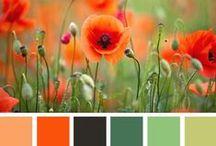 ▲ Color Palette