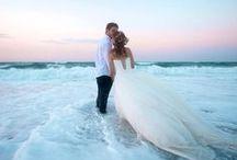 Sand Dollar Doves Weddings / Beach Wedding, Tropical Wedding, Island Wedding