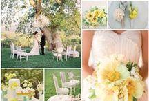 Mellow Yellow Wedding Flowers
